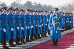 Servische legermilitairen op het rode tapijt Royalty-vrije Stock Foto