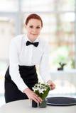 Servitris i restaurang arkivfoton