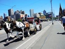 Servizi di un trasporto del cavallo nella città di Melbourne Immagine Stock Libera da Diritti