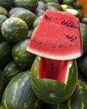 Servizio dei coltivatori immagine stock libera da diritti