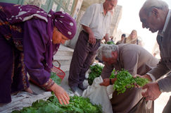 Servizio del Palestine Immagini Stock