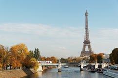 Servizio del treno ad alta velocità e cygnes del DES della bacca nella città di Parigi Fotografie Stock