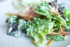 Servizio dell'insalata sana delle verdure Fotografia Stock Libera da Diritti