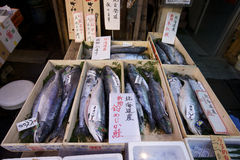 Servizio di pesci di Tsukiji Tokyo Fotografia Stock Libera da Diritti
