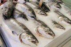 Servizio di pesci freschi Fotografia Stock