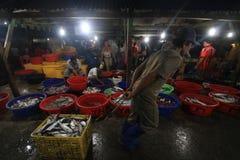Servizio di pesci a Hong Kong Immagine Stock Libera da Diritti