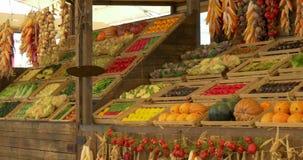 Servizio di verdure cinese stock footage