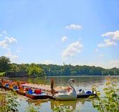 Servizio locativo della barca del cigno in un lago Immagine Stock