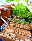 Servizio organico Fotografia Stock