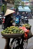 Servizio vietnamita Immagine Stock