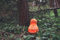 Servo della zucca di Halloween nel legno sull'erba vicino all'albero Immagini Stock