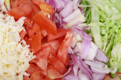 sery poszatkowany warzywa fotografia stock