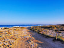 Ses Illetes Beach, Formentera Royalty Free Stock Photos