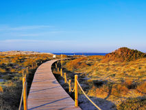 Ses Illetes Beach, Formentera Stock Photography