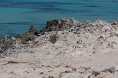In Ses Illetes setzen Strand und Steine in Formentera auf den Strand Lizenzfreie Stockfotos