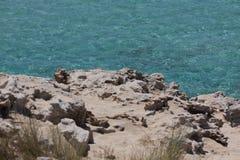 In Ses Illetes setzen Strand und Steine in Formentera auf den Strand Lizenzfreie Stockbilder