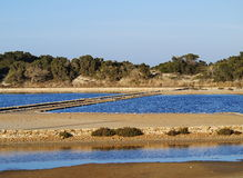 Ses Salines, Formentera Royalty Free Stock Image