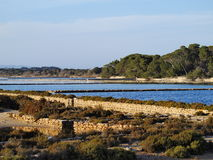 Ses Salines, Formentera. Ses Salines - place where marine salt is produced on Formentera, Balearic Islands, Spain Stock Image