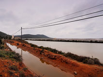 Ses Salines, Ibiza Stock Images