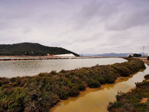 Ses Salines, Ibiza Stock Photos