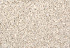 Sesam-Startwert für Zufallsgeneratorhintergrund Stockfoto