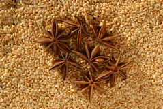 Sesame and anise Royalty Free Stock Photo