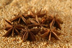 Sesame and anise Stock Photography