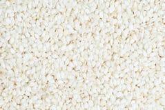 Sesame background, macro Stock Photography