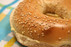 Sesame Bagel Stock Photography