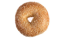 Sesame Bagel Isolated Stock Image