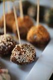 Sesame ball appetizer Stock Image