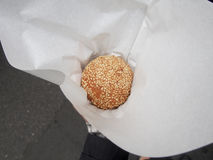Sesame Ball. A popular Asian treat, jian dui is a fried ball of dough filled with red bean paste Stock Photography