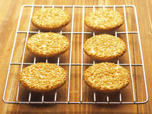 Sesame biscuits. Delicious freshly baked sesame biscuits Stock Photos