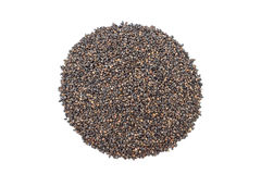 Sesame, black sesame, in isolate on white. Sesame, black sesame, (grain) in isolate on white background Stock Images