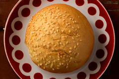 Sesame bun lays on a plate. With a red pattern Stock Photography