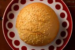 Sesame bun lays on a plate Stock Photography