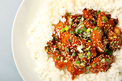 Sesame chicken with rice Royalty Free Stock Photos