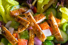 Sesame chicken salad Stock Image