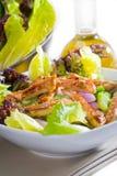 Sesame chicken salad Royalty Free Stock Photos