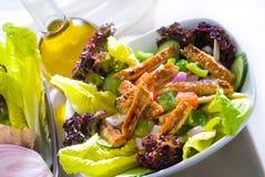 Sesame chicken salad Stock Images