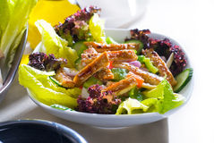 Sesame chicken salad Royalty Free Stock Photography