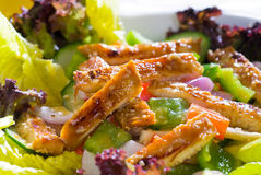 Sesame chicken salad Royalty Free Stock Images