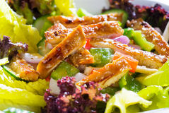 Sesame chicken salad Royalty Free Stock Photos
