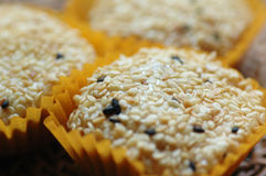 Sesame Coated Glutinous Rice Cookies Royalty Free Stock Image