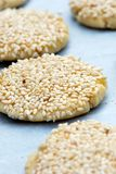 Sesame cookies Royalty Free Stock Image