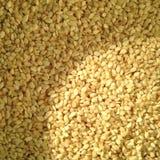 Sesame. Extreme Closeup Of Sesame Seeds Texture stock images