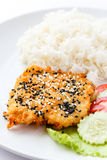 Sesame fried fish Stock Image