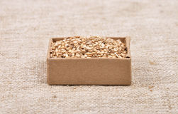 Sesame on linen Stock Photography