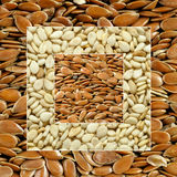 Sesame & linseed Stock Images