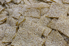 Sesame maltose Royalty Free Stock Photos